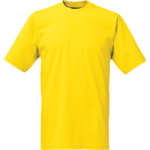 Blazing yellow 44